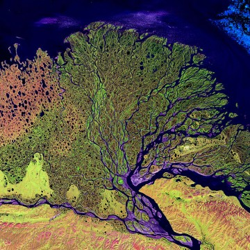 Satellite Image of Lena River Delta . Source Wikipedia